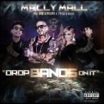Drops-Bands-On-It-Mally-Mall-Featuring-Wiz-Khalifa-TYGA-Fresh-jpeg